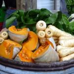 Oratia farmers market, fresh vegies