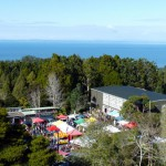 Titirangi market, nestled in between trees