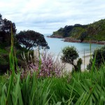 Waiheke island, the hidden paradise